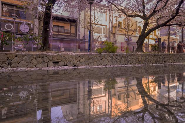 京都 木屋町高瀬川沿い