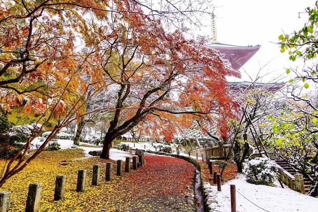 成田山新勝寺公園、千葉県成田市