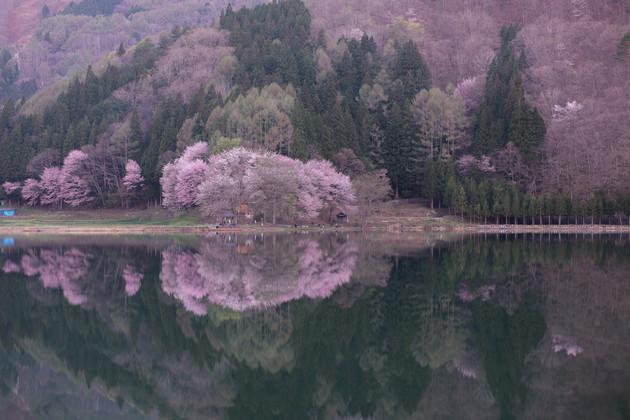 水鏡の中綱湖
