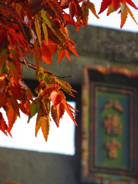 秋田県由利本荘市本荘八幡神社