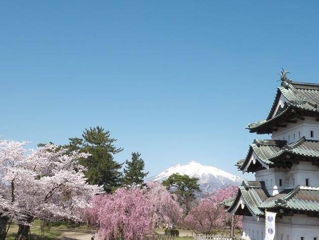 青森県弘前公園、天守閣。
