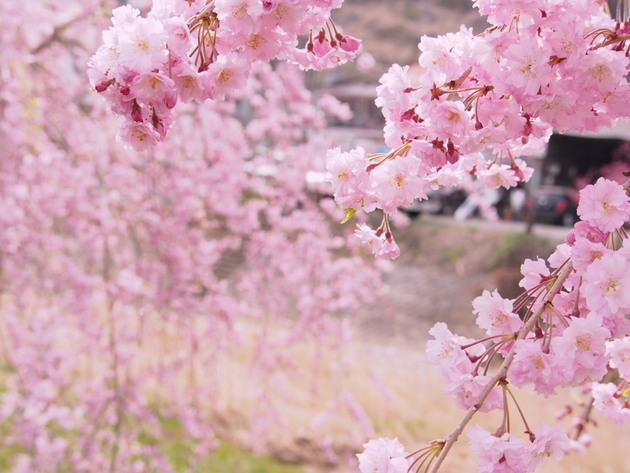 福島県石川町