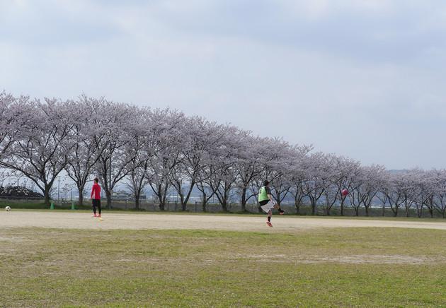 福岡県遠賀郡