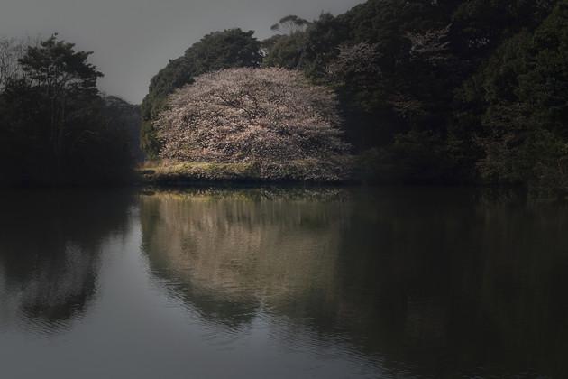 福岡県北九州市若松区頓田貯水池