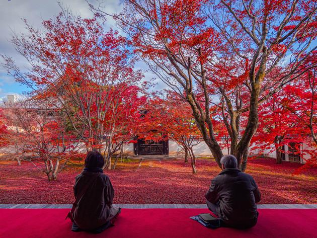 京都市妙覚寺