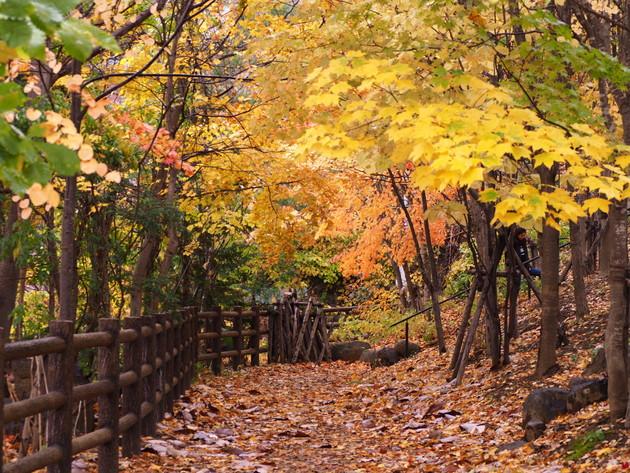 札幌市南区定山渓温泉