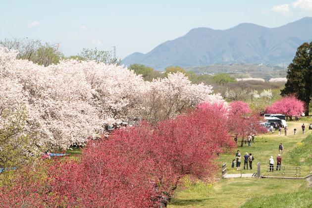 千曲川河川公園、長野