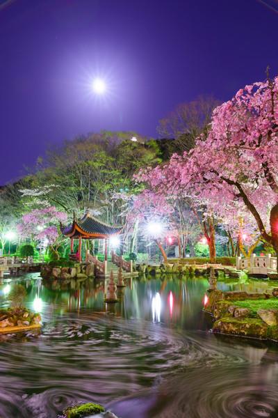 岐阜市 日中友好庭園