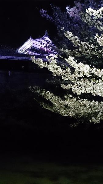 愛媛県松山市 松山城