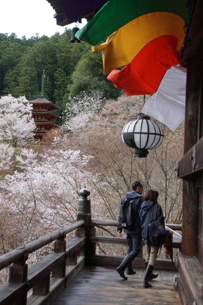 長谷寺(奈良県)