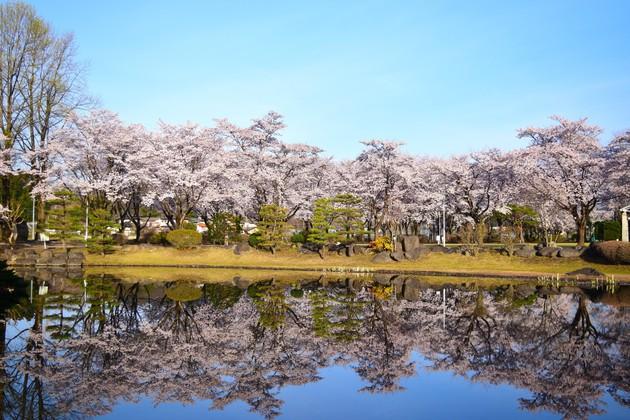 那珂川湖畔公園