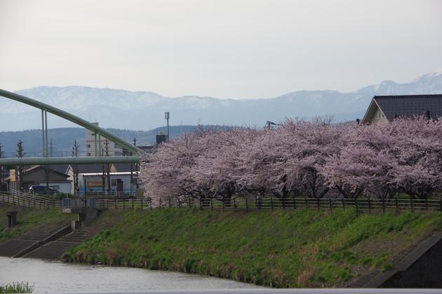 金沢市伏見川