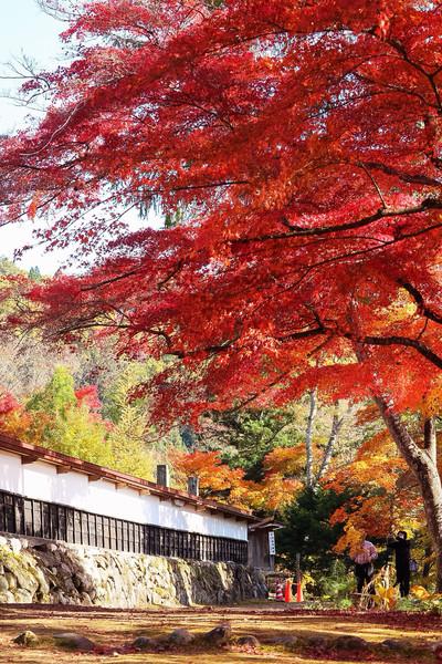 福島県、柳津町
