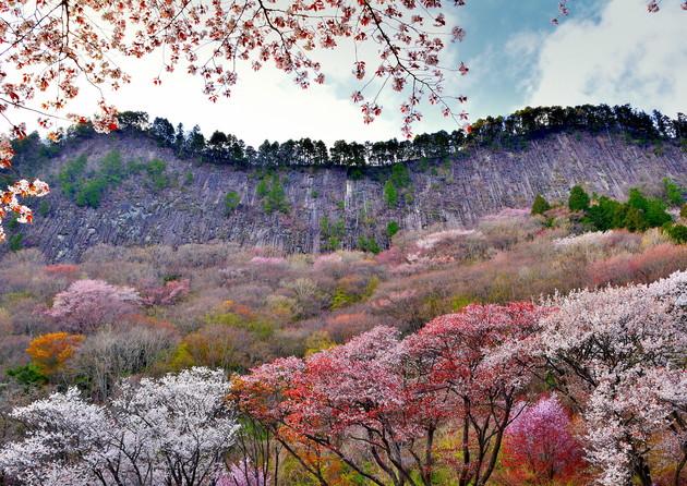 奈良県曽爾村屏風岩公苑