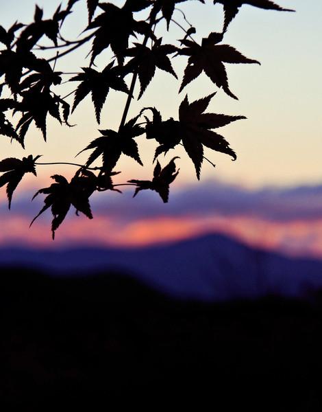 京都 大河内山荘より比叡山