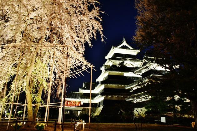 長野県、松本城
