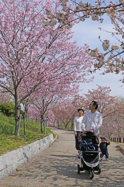 名古屋市 東山植物園