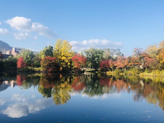 中島公園 札幌市