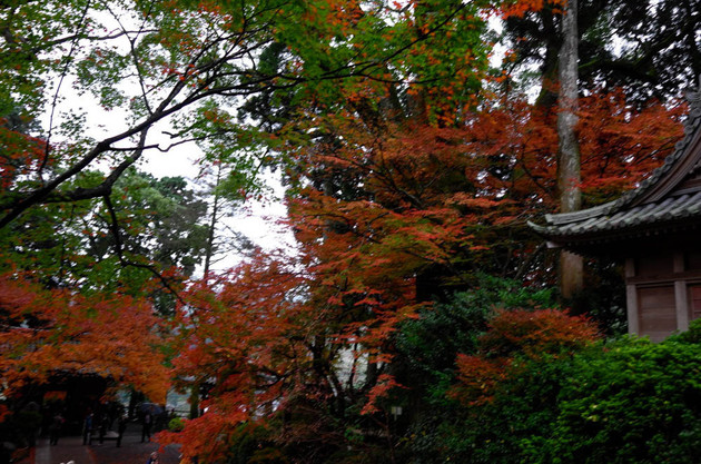 福岡 基山 大興善寺