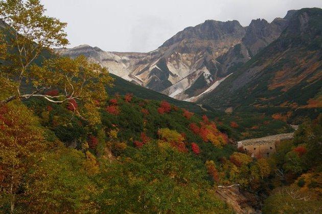 十勝岳温泉峡で安政火口の紅葉