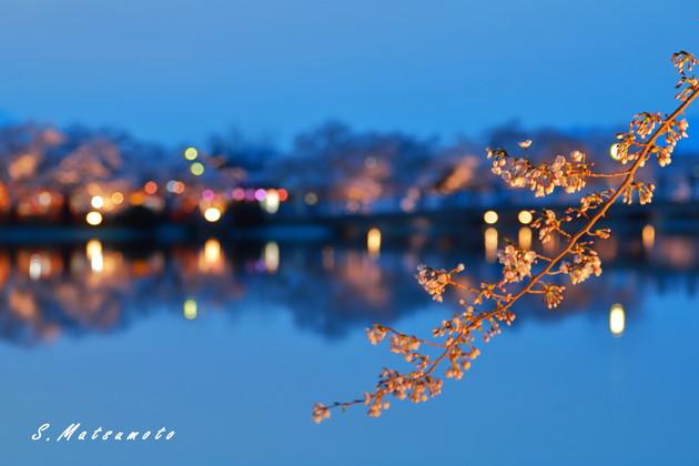 臥竜公園 須坂市 長野県